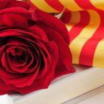 Read more about the article S'obre el període d'inscripció per posar una paradeta per Sant Jordi