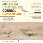 Read more about the article Jornada de voluntariat per la neteja de la zona dunar de la platja de Cunit