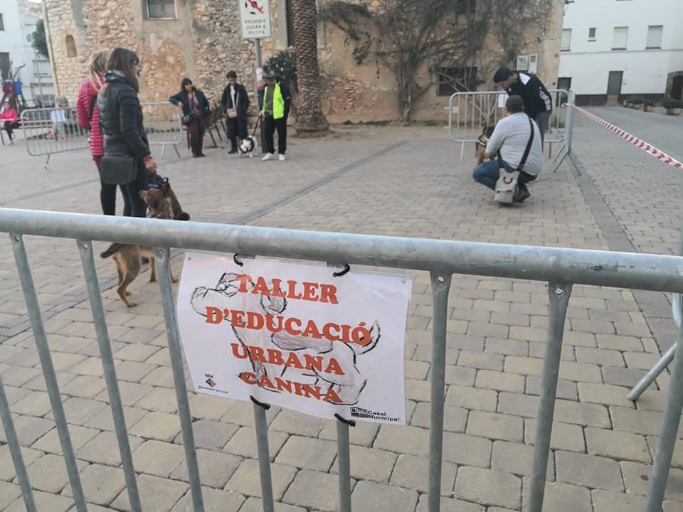 Inici curs educació urbana canina