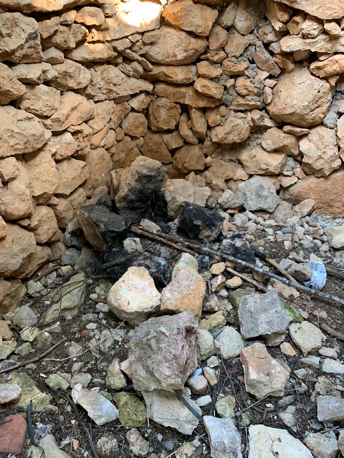 Read more about the article Apareix malmesa la Barraca de Pedra Seca que s'està reconstruint