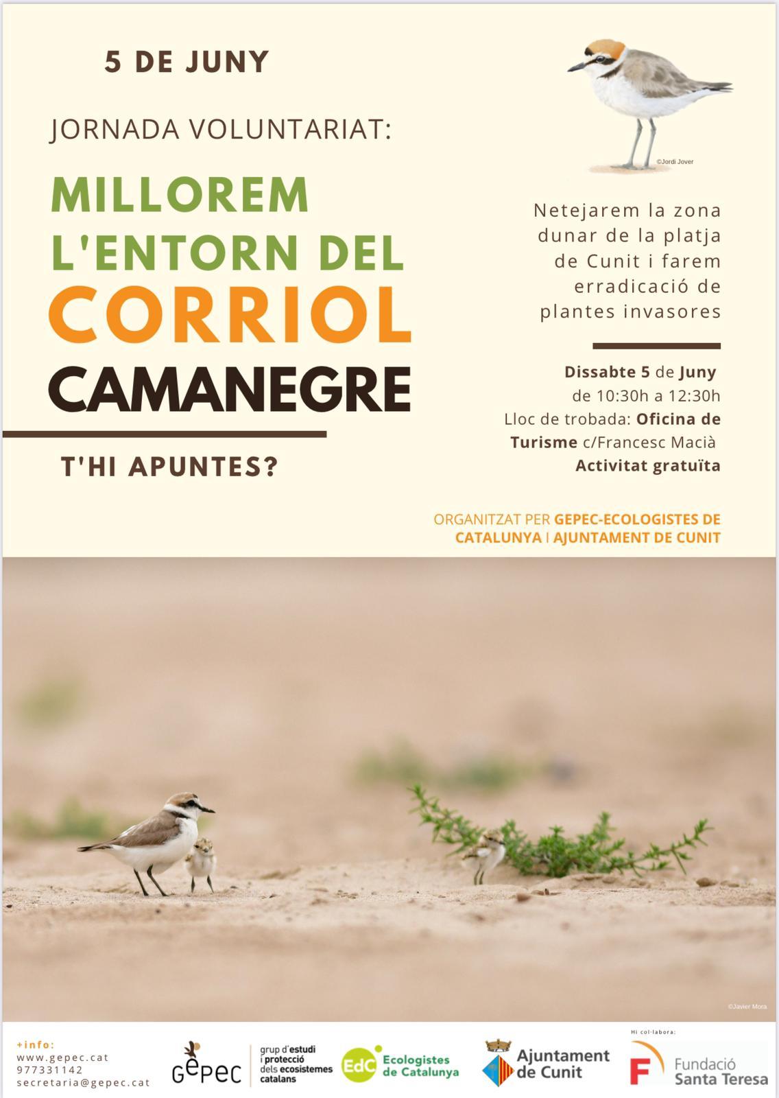 Nova jornada de millora de l'entorn del Corriol Camanegre